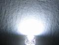LED 4,8mm 120gr Super Bright WIT max 2500mcd 3,5V Envelop